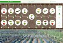 La app creata da Orto 2.0 è dotata di una web cam che permette di monitorare 24 ore su 24 il proprio raccolto