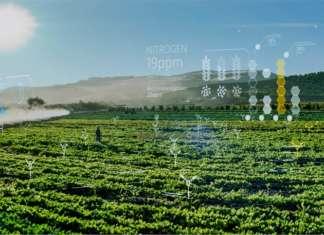 Il surriscaldamento del pianeta richiede lo sviluppo di modelli predittivi, a tutela delle colture, basati sull'intelligenza artificiale