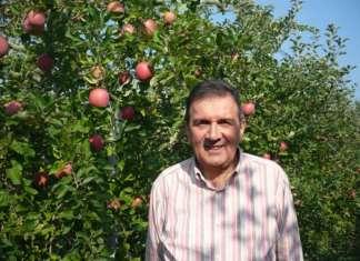 Gianmauro Bergamini, presidente del Consorzio MelaPiù, la mela Fiji di Ferrara