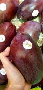 Il nuovo brand Etna Mango che certifica la produzione dalla Sicilia