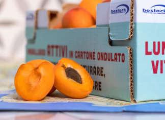 Con Attivo di Bestack lo scarto, nel caso delle albicocche, si riduce del 13 al 18%. La shelf-life si allunga fino a 36 ore