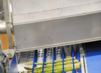 All'International Asparagus Days sono attese un centinaio di aziende, da ogni parte del mondo, specializzate nei diversi settori