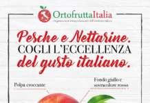 La campagna istituzionale promossa da Ortofrutta Italia punta a sensibilizzare il consumatore alla scelta del prodotto italiano, in sofferenza rispetto a quello spagnolo