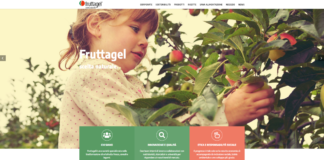 Nel nuovo sito Fruttagel si dà spazio alla sostenibilità sociale e ambientale, ai prodotti, con consigli alimentari e un blog con ricette