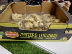 Arrivano anche i primi produttori di zenzero italiano, come Del Monte