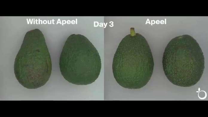 La soluzione vegetale di Apeel Sciences può arrivare a raddoppiare e triplicare la shelf-life di molti prodotti ortofrutticoli