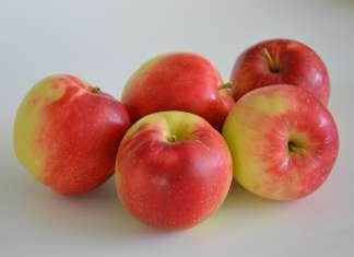 SweeTango è una varietà di mela dolce e aspra con inedita croccantezza