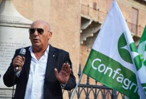 Albano Bergami, presidente nazionale della sezione frutticola di Confagricoltura e membro del Cda di FuturPera