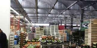 Il Mercato Agroalimentare di Milano è tra i più importanti mercati all'ingrosso d'Europa, con 700 mila metri quadri di spazio