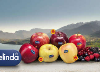 Melinda vanta una brand awareness del 97%, secondo un'indagine condotta da Lexis Research