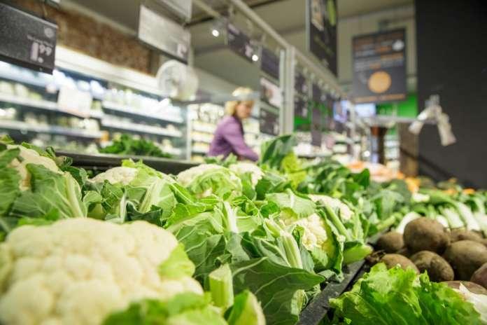 Rijk Zwaan, tra le più grandi aziende sementiere, è pronta a incontrare e supportare i produttori biologici e tutti i partner della filiera