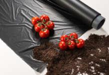 Ecovio M 2351, prodotto da Basf, è stato il primo materiale a essere certificato biodegradabile in suolo a norma dello standard europeo DIN EN 17033