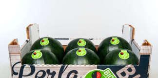 Da giugno 2020 l'anguria Perla Nera bio sarà nella gdo commercializzata da Canova