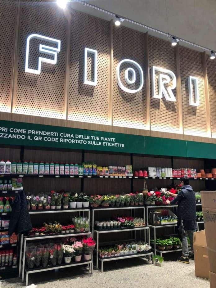 Il mercato dei produttori di fiori vede tra i primi posti Paesi Bassi, Ecuador, Kenya e Sri Lanka