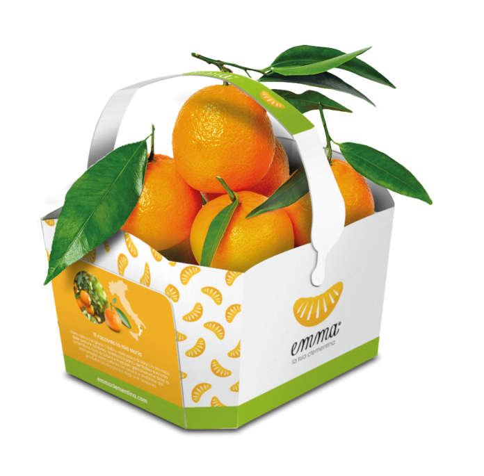 La clementina Emma della piana di Sibari nel suo colorato packaging