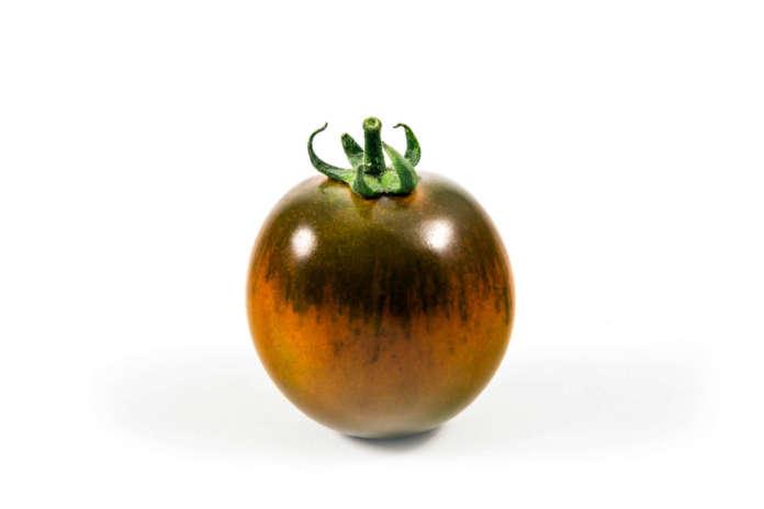 Il pomodoro Camone sviluppato da Syngenta garantisce il consumatore che il prodotto è coltivato esclusivamente da 4 aziende agricole autorizzate e totalmente tracciabile