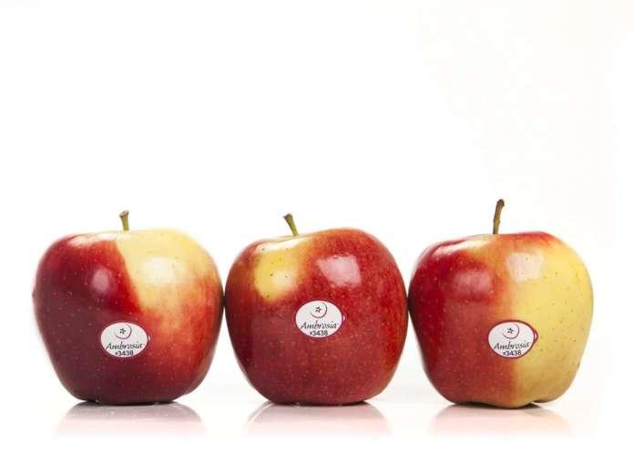 La mela Ambrosia è caratterizzata da un gusto dolcissimo e consistenza croccante. Il claim è