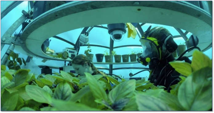 Con il progetto Orto di Nemo il basilico cresce in biosfere di metacrilato, poste a quasi dieci metri di profondità nel Mar Ligure, vicino a Noli