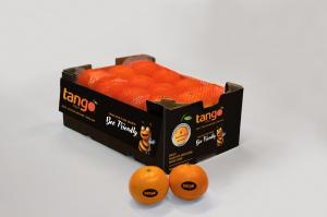 Pronta il lancio della campagna di comunicazione per il mandarino sweet e seedless