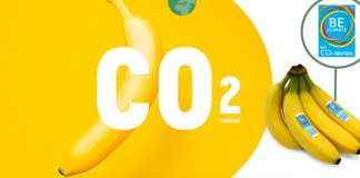 Il piano del retailer belga Delhaize prevede di raggiungere entro il 2021 la neutralità dell'impronta carbonica, e di ridurre l'uso della plastica e gli sprechi alimentari