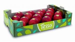 Mela Tessa, qui nel formato box