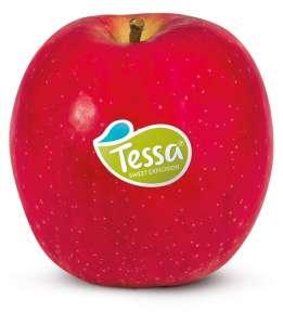 Una mela consistente, dolce e aromatica, con buona shelf-life