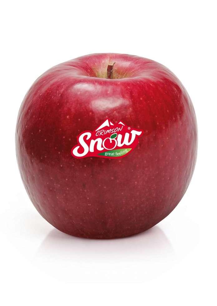 Snow è un marchio registrato a livello mondiale. Diverse aziende italiane hanno investito nel progetto, tra cui Vog