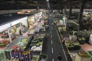 Il mercato dell'ortofrutta di Milano, uno dei 4 del Mercato Agroalimentare Milano