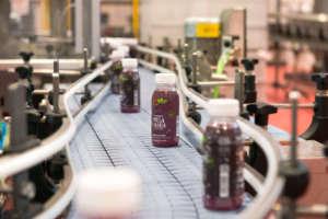 Lo stabilimento di trasformazione e confezionamento è immerso tra 350 ettari di frutteti