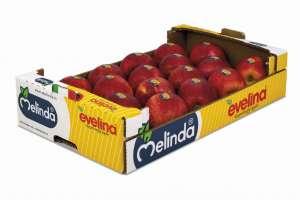Boom di vendite da metà febbraio per Evelina, la mela club di Melinda