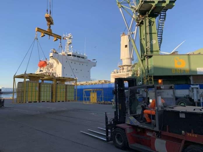 kiwi zespri arrivo porto belga