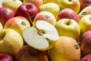 Le diverse varietà di mele Melinda