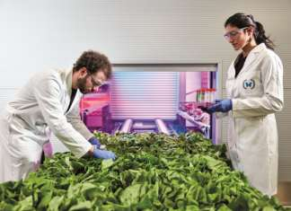 Ono Exponential Farming, team agronomico nella Farm Zero