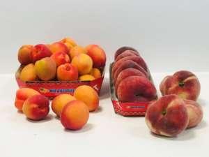 Frutta estiva Oranfrizer, made in Sicilia