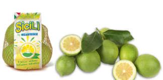 Sicilì, il limone dell'Etna di Oranfrizer debutterà sul mercato nelle prossime settimane
