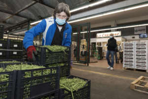 Operatori Foody, mercato ortofrutticolo di Milano
