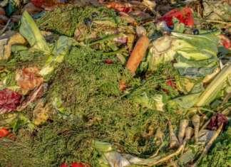 L'alcol denaturato deriva da scarti agricoli, tra cui patate, uva e altri prodotti ortofrutticoli