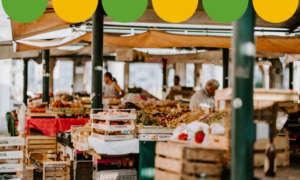 Il sito punta a rappresentare un vero mercato rionale con esperienza d'acquisto digitale