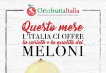 La campagna di Ortofrutta Italia sostiene il melone italiano, un prodotto stagionale