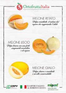 La campagna di Ortofrutta Italia mira a far conoscere le diverse tipologie di melone italiano
