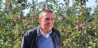 Gianmauro Bergamini, Presidente del Consorzio MelaPiù di Ferrara