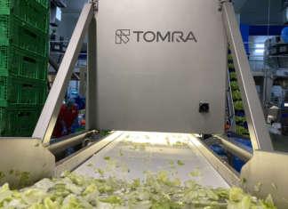 Tomra Rago insalate