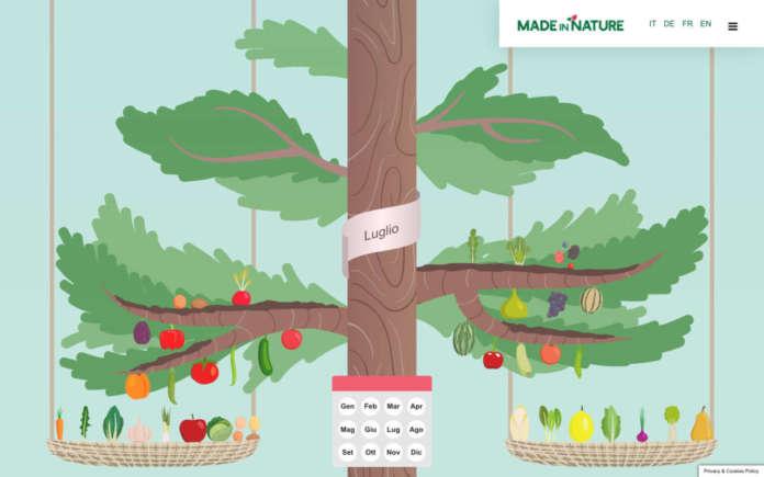 Albero della stagionalità, una novità del sito Made in Nature