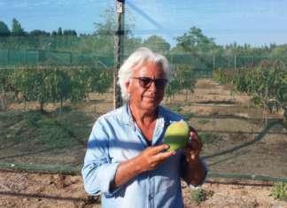 Vincenzo Amata , referente commerciale per il marchio Papamango