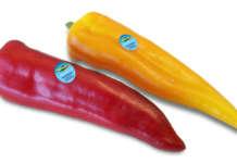 Il peperone Cornelio, linea Specialità Valfrutta Fresco