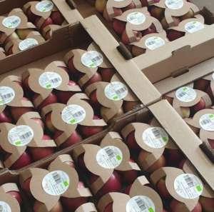 Packaging sostenibile SìamoBio