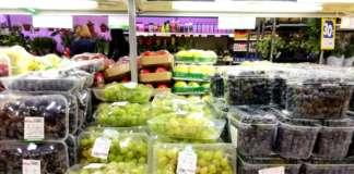 Per le uve è cominciata la produzione delle cultivar della stagione autunnale