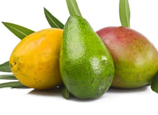 Avocado mango papaia frutta tropicale