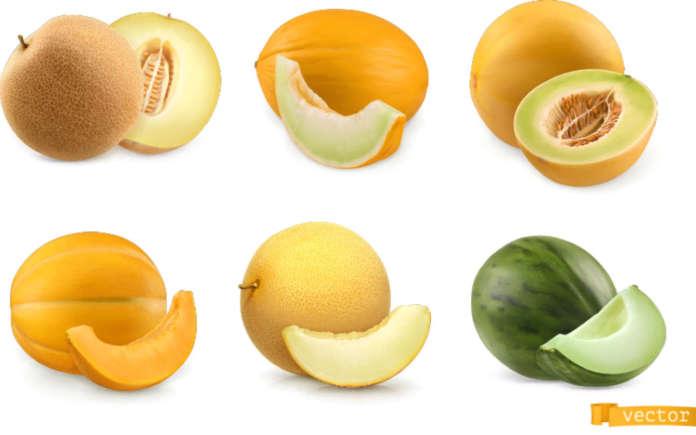 meloni campagna prezzi 2020 italia