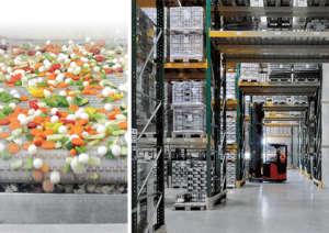 Citres, azienda veronese, è tra le prime imprese conserviere per capacità produttiva